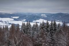 Winter_Wilzenberg-085