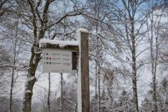 Winter_Wilzenberg-098