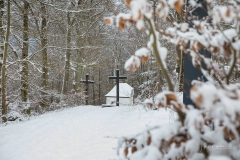Winter_Wilzenberg-100
