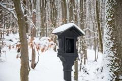 Winter_Wilzenberg-109