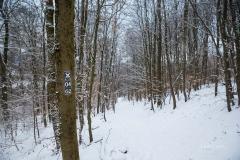 Winter_Wilzenberg-112
