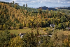 Oberkirchen - Wolfskuhle 6