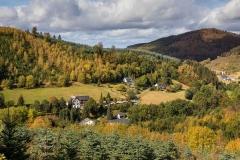 Oberkirchen - Wolfskuhle 8