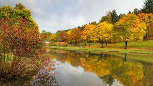 Kurpark Elkeringhausen im Herbst